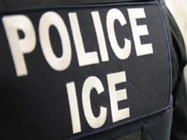deportation and homeland security