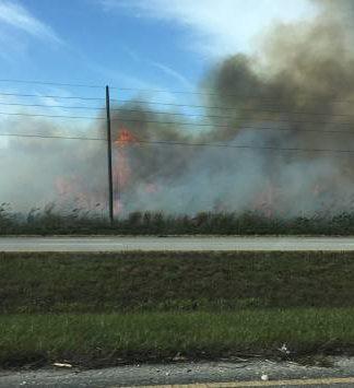sugar cane burning