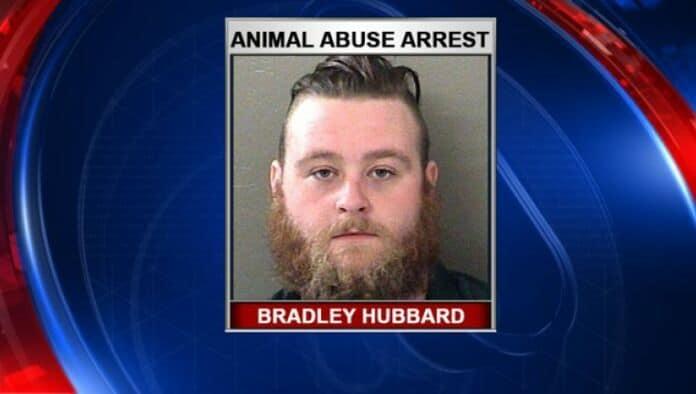 Bradley Hubbard